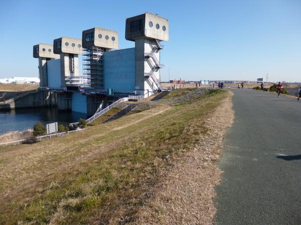 谷川真理ハーフマラソン Bコース 岩淵水門