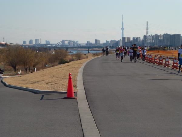 谷川真理ハーフマラソン Bコース スカイツリー