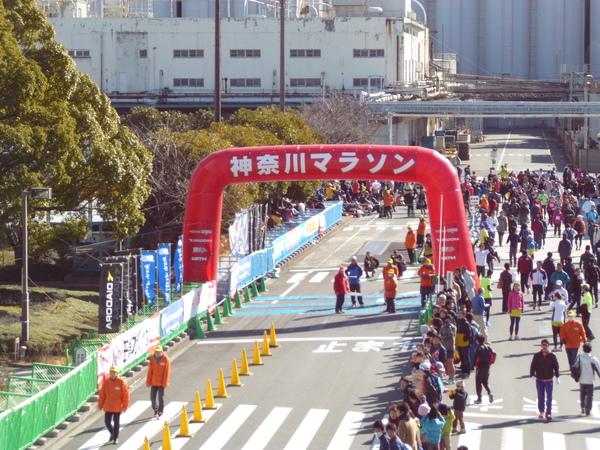 第37回 神奈川マラソン 会場