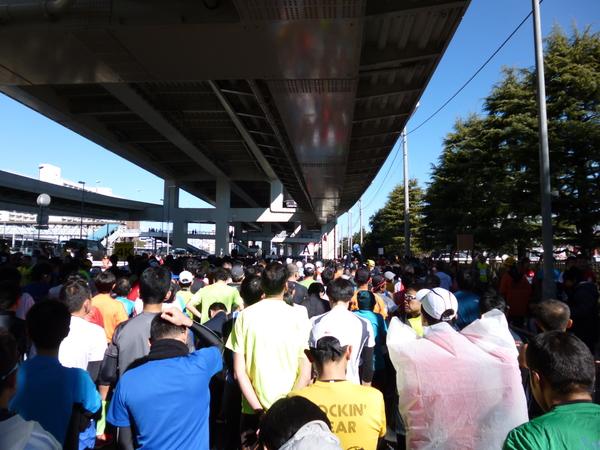 第37回 神奈川マラソン スタート直前の風景