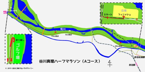 谷川真理ハーフマラソン Aコース