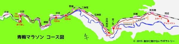 青梅マラソン コース図