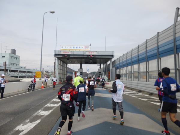 横浜マラソン2016 首都高速湾岸線 杉田料金所(22km手前)