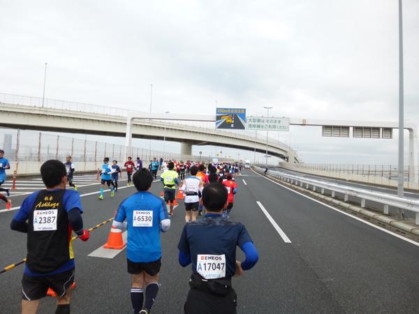 横浜マラソン2016 首都高速湾岸線 本牧ふ頭折り返し(32km手前)
