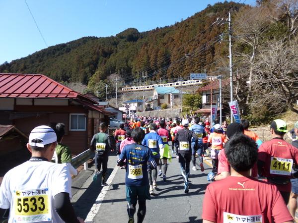 第52回青梅マラソン、12.5km付近