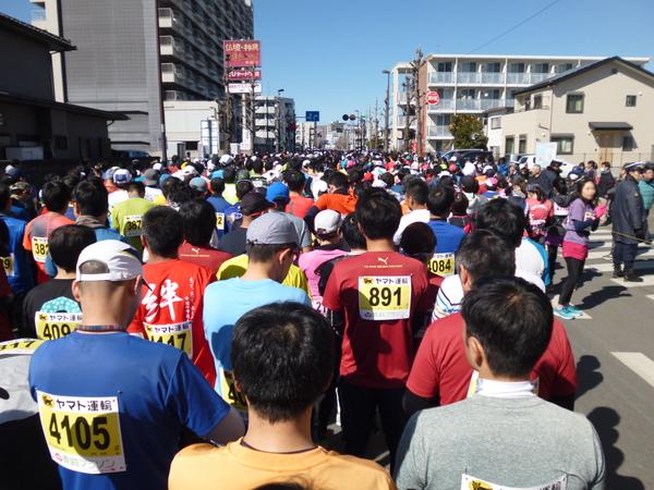 第52回青梅マラソン、スタート直前の様子